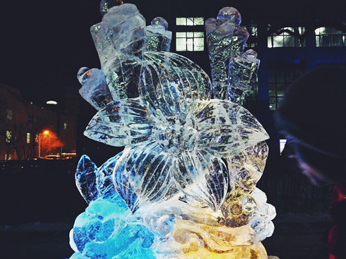 """我校举办""""哈尔滨工业大学冬季最美校园""""冰雪摄影比赛"""